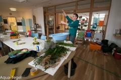 Vorbereitung Pflanzen