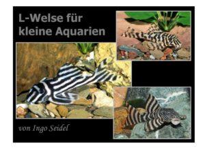 """Kleine L-Welse @ Restaurant """"Zum Kegel"""""""